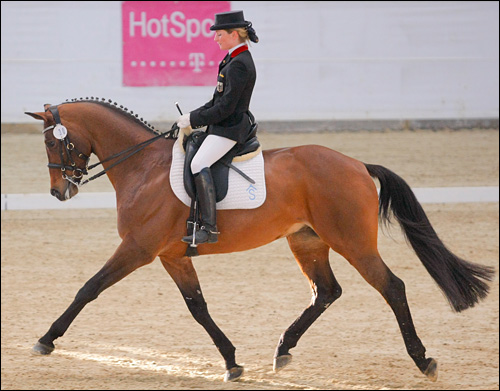 Halimey extended trot